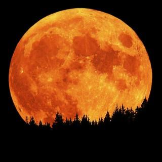 La lluna, la pruna, vestida de dol
