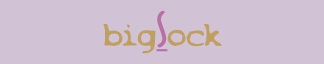 bigsock