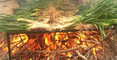 Cocidos al fuego