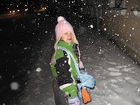 Der erste Schnee 2007