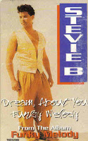 """Dream About You"" ""Funky Melody"" Stevie B"