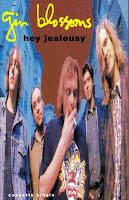 """90's Songs """"Hey Jealousy"""" Gin Blossoms"""