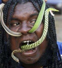 Snake Dude Needs A Life