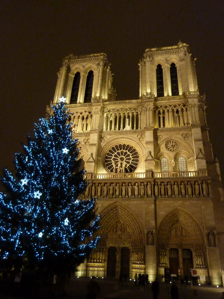 Daily Photo in Paris: Notre Dame 2010 Christmas tree
