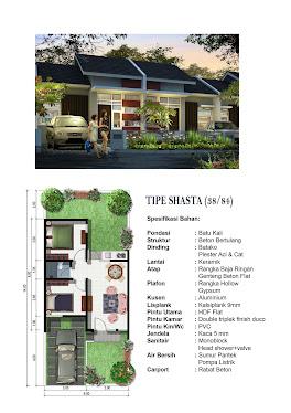 Spesifikasi Type Shasta