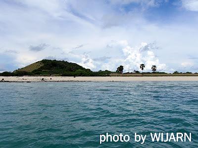 ชาดหาดเกาะริ้น