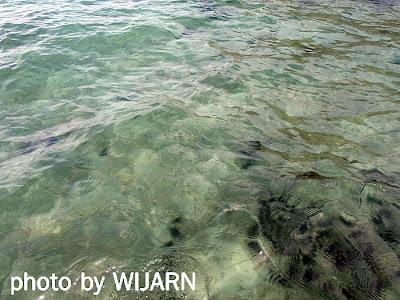 น้ำทะเล