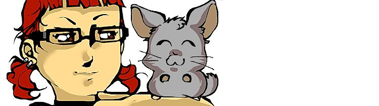 Mi chinchilla Totoro