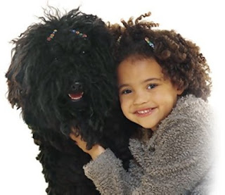 curly hair girl and her dog