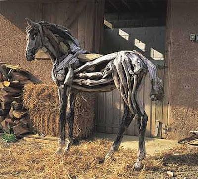 horse at the farm