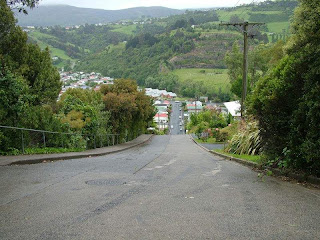 view from the top of baldwin street in dunedin, new zealand