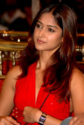 Ileana D'Cruz hot photo