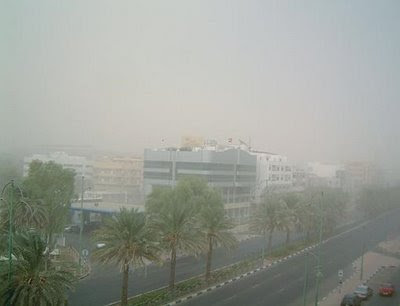 Residents run for cover as dust storm hits Al Ain