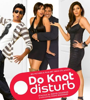 Do Knot Disturb 2009 Hindi Movie Download