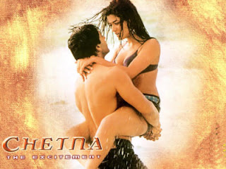Chetna: The Excitement 2005 Hindi Movie Watch Online