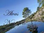 besøk gjerne min naturfotoblogg