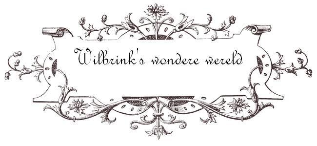 Wilbrink's wondere wereld