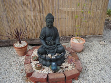 mix succulents and Buddha