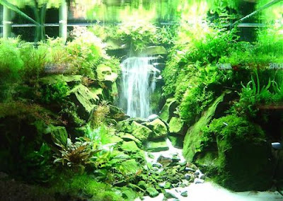 Aquatic eden aquascaping aquarium blog for Waterfall fish tank