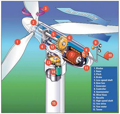 ... : Wind energy sector - How does the wind energy generate electricity