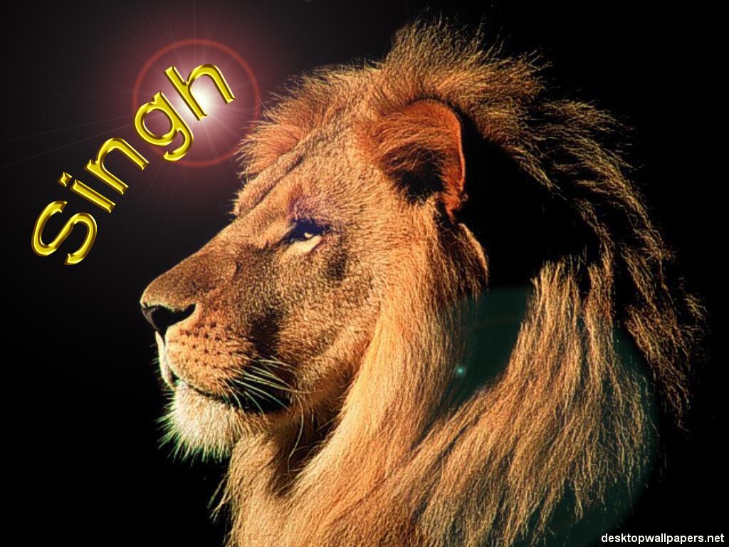 http://2.bp.blogspot.com/_cxwFrZ3mdy4/S8rVAUOElfI/AAAAAAAAAIg/Js_Mkabi7r8/s1600/lion06_1024x768+copy.jpg