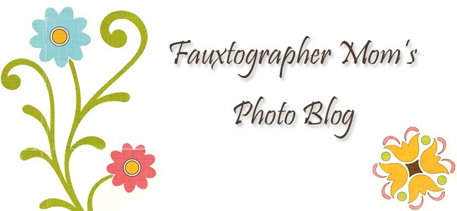 Fauxtographer Mom's Photo Blog