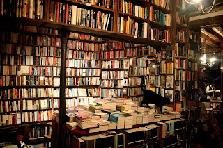 http://2.bp.blogspot.com/_cySORt5l4DQ/S51ookB0-KI/AAAAAAAAAV4/u0kKwnpfqfs/s320/Libros+y+gato.jpg