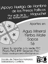 ¡ Apoyo a mapuches en Huelga de Hambre !