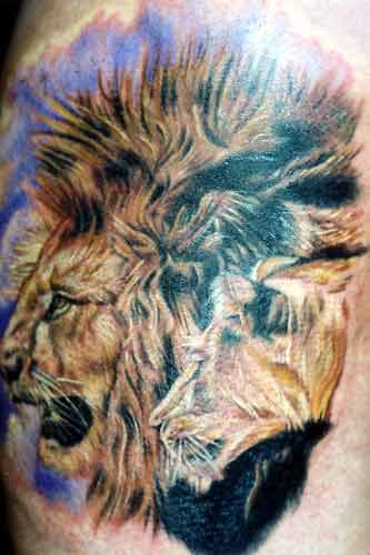 Labels lion tattoos