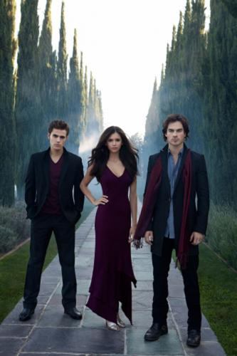 vampire diaries damon and stefan. There are three people in ones