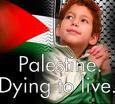 Doakan kesejahteraan Saudara Semuslim Palestin, Moga senyuman bisa terukir untuk anak2 palestin