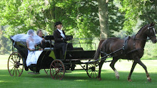 Wedding Carriage for hire!
