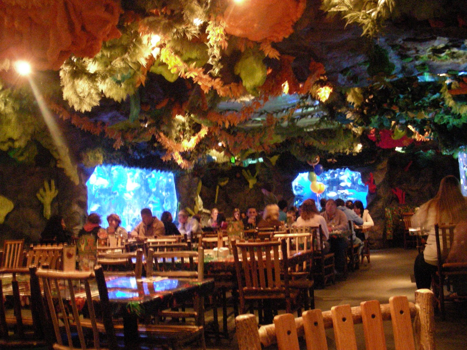 Rainforest Cafe San Antonio Comments