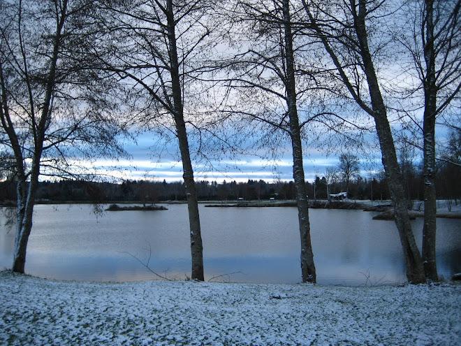 """""""Rose Lake"""""""