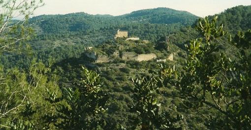 Castell de Vilallonga