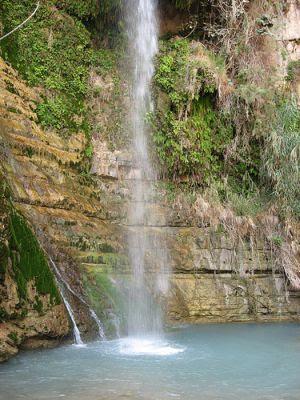 asia travel spots, Ein Gedi National Park