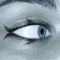 El ojo del navegante