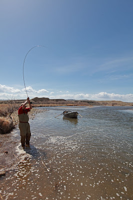 Wyoming fly fisher grey reef fly fishing for Miracle mile fishing report