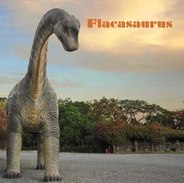 Flacasaurus