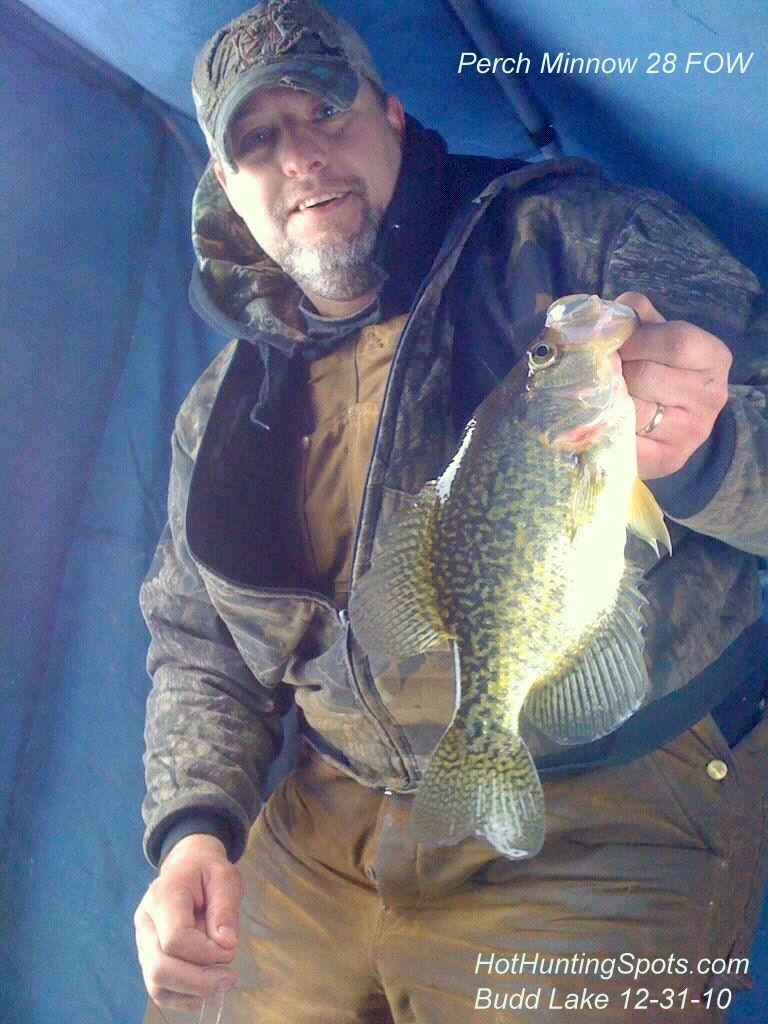 Houghton lake walleye report budd lake fishing report 12 for Enid lake fishing report