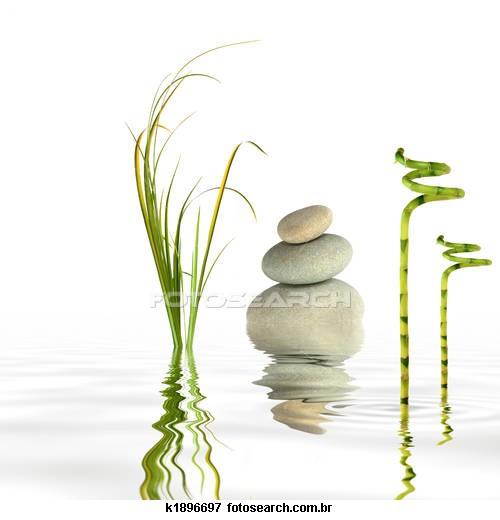 A Arte de se harmonizar , consigo mesmo e com a natureza