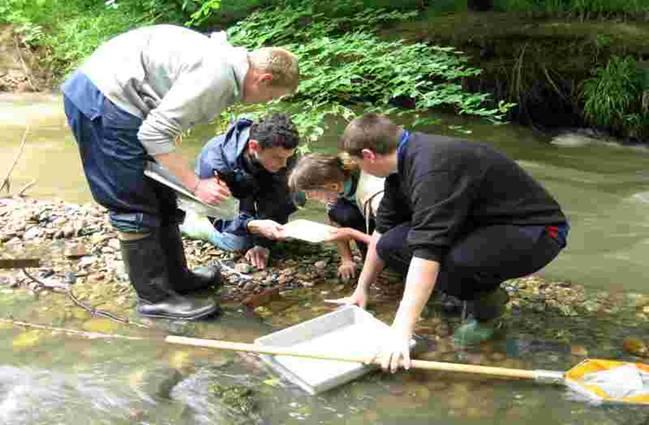 Environmental law case studies