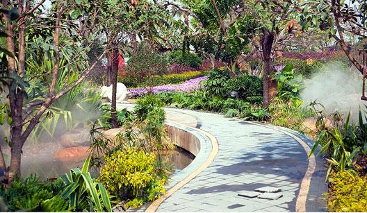 plantas jardim sensorial : plantas jardim sensorial ? Doitri.com