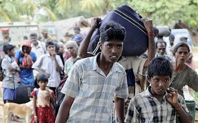 'Most Tamil refugees want to remain in India'