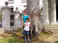 En la Ceiba del Templete
