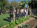 Visita a Horta Pedagógica