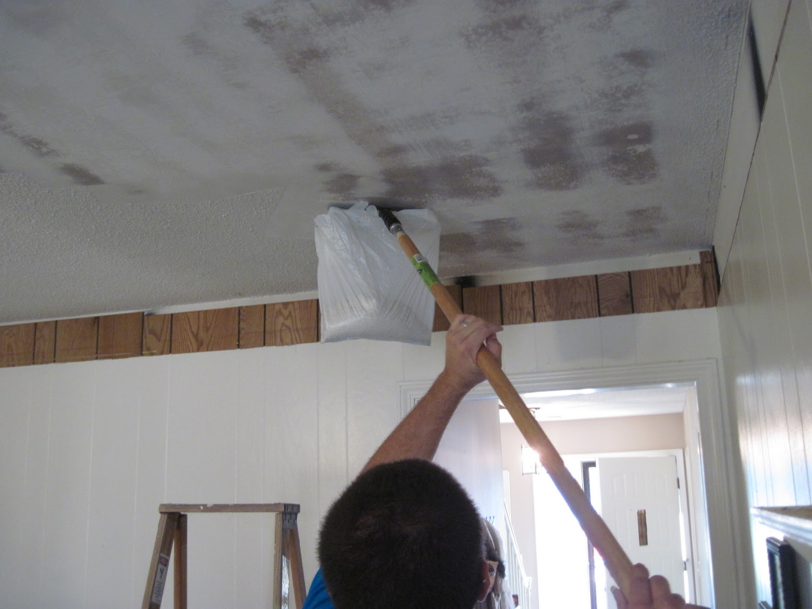 Cottage instincts the score is harveys 1 cottage cheese for How to remove popcorn ceiling without water