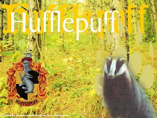 Salão Comunal Lufa-Lufa Hufflepuff2