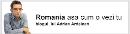 Blogul ROMANIA IN BIRECT