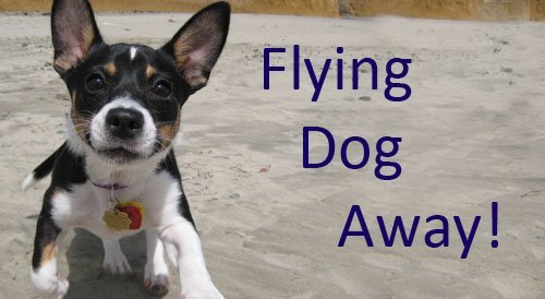 Flying Dog Away!